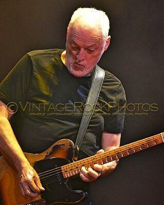 David Gilmour Photo 8x10 inch 2016 MSG NYC, NY Rattle That Lock Concert Tour 126