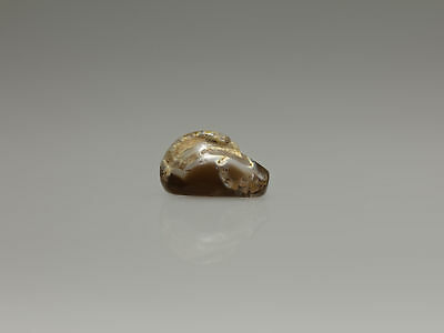 Mesopotamian Agate Duck Weight