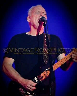 David Gilmour Photo 8x10 inch 2016 MSG NYC NY Rattle That Lock Concert Tour 113