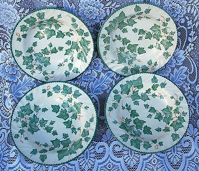 BHS  Trailing Ivy Leaf 4 Soup Pasta Bowls 9 inches 23 cms