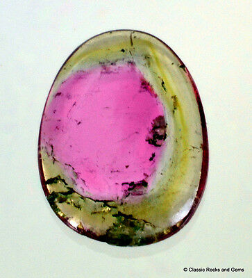 Untreated Watermelon Bi color Tourmaline Gemstone Cabochon 0.70 ct Brazil (Z)