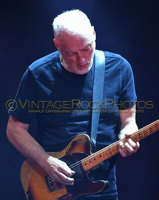 David Gilmour Photo 8x10 inch 2016 MSG NYC, NY Rattle That Lock Concert Tour 71