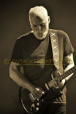 David Gilmour Photo 8x12 inch 2016 Concert Tour Ltd Edition Art Design Print 183
