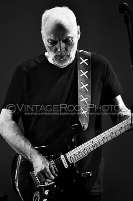 David Gilmour Photo 8x12 in 2016 Concert Tour Ltd Edition Art Design Print 185b