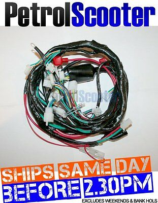 Baotian BT49 QT9 Scooter Wiring Loom BTM JMStar Fits Lots Of Chinese Models