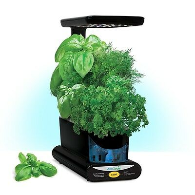 Miracle-Gro AeroGarden Sprout LED with Gourmet Tomato Seed Pod Kit - Black *NEW*