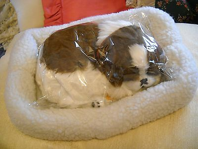 Perfect Petzzz St Bernard Puppy In Fleece Bed: New, Still Wrapped, W/papers