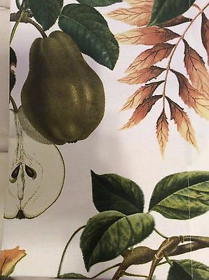 Williams Sonoma Botanical Pear Tablecloth 70x108 New! 100% Cotton