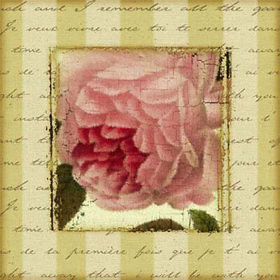 RoManTiC ReDouTe PoSTCarD RoSeS ShAbBy WaTerSLiDe DeCaLs