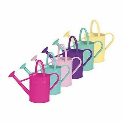 World Source Partners Galvanized Watering Can - 1 Gallon, Assorted Colors