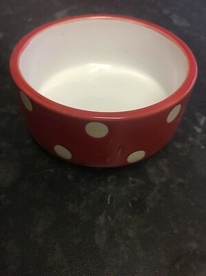 Red Spotty Ceramic Small Animal Food Bowl