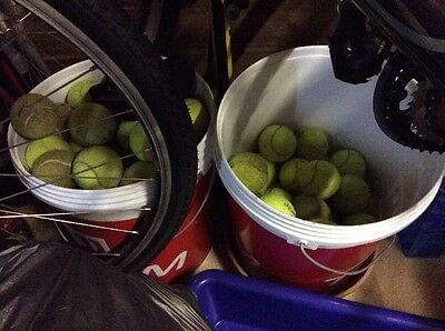 20 Used Tennis Balls - dog toys etc.... COLLECTION ONLY.