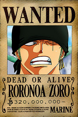 One Piece WANTED Poster (26 x 40 cm) - RORONOA ZORO – Last Bounty!