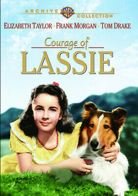 Courage Of Lassie (2014, DVD NUEVO) (REGION 1)