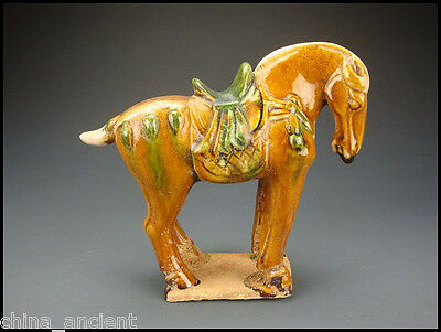 Ancient Chinese Rare Tang Dy SanCai Glaze Pottery Old China Horse Statue