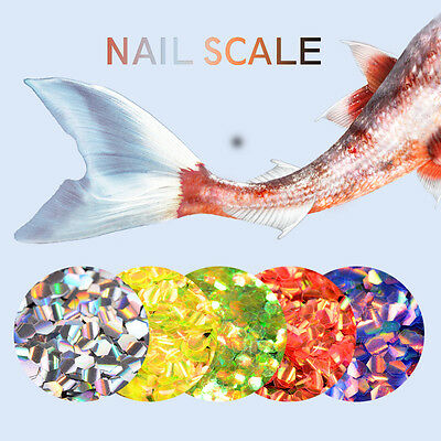 2g BORN PRETTY Nail Art Sequins Fish Scale  Hexagon Glitter  1Box
