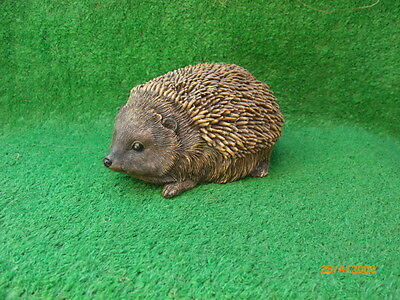 Latex Rubber Mould To Make A Cute Hedgehog