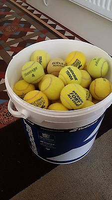 72 Used Tennis Balls And Coaching Bucket
