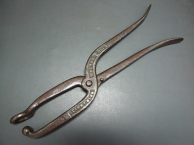Cobblers cast iron bunion shoe leather working tool Lightning Pulton Ill