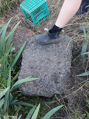 EXTRA LARGE VOLCANIC / HONEY COMB  GARDEN ROCKS -   Pick Up WANDIN