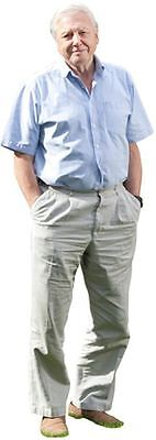 David Attenborough Cardboard Cutout (life size OR mini size). Standee. Stand Up.