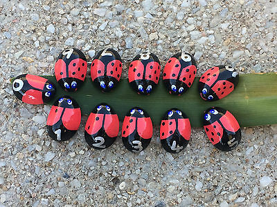 Ladybug Counting Stones - Number Stones