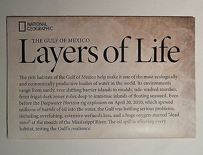 National Geographic Map Gulf Of Mexico Map Oct 2010 Layers Life Oil Spill Map