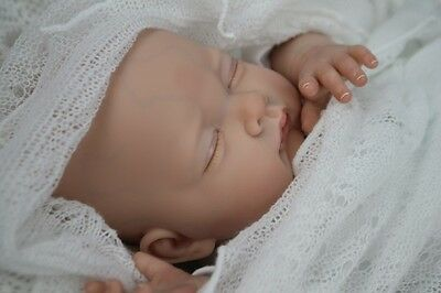 !sale Price! Absolutely Beautiful Reborn Sofia ~ Bald Baby Girl ~ Full Limbs