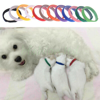 12Pcs Colours Dog Puppy Kitten Newborn Welping ID Bands Collars Set - UK Seller