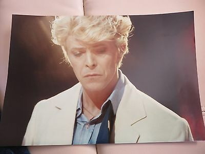 David Bowie Photo original direct from photographer 1983  L@@K 12 x 8
