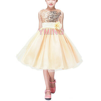Girls Princess Birthday Party Dress Tutu Tulle Shiny Toddler Sequins Dress 5T-6T