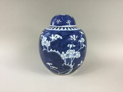 19th/20th Century Large Chinese Blue and White Ginger Jar - Prunus Blossom