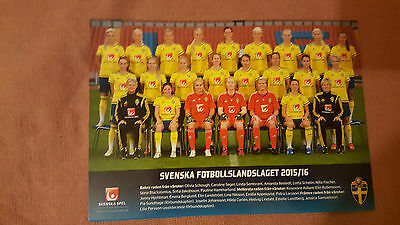 2015/16 Sweden Women's National Team Official Picture Postcard: Football