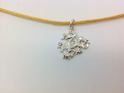 Elegant Sterling silver dragon on gold string with Tibetan silver clasp