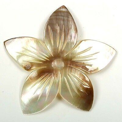 Stunning Carving MOTHER OF PEARL Flower 39x38 mm Flat Gemstone 8.50 Carats eBay