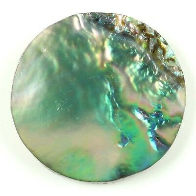 11.50 Cts Genuine ABALONE SHELL Multicolor Loose Gemstone Round Flat 22x22 mm