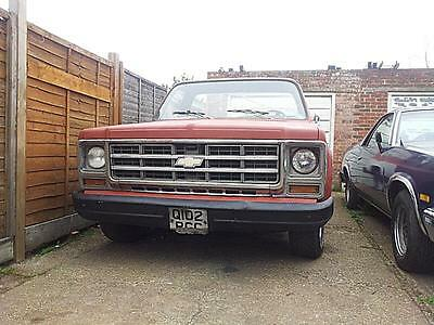 1979 Chevrolet C10 Short Bed Project