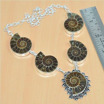 Huge 925 Sterling Silver Plated Natural Fossil Necklace Jewelry New Collection