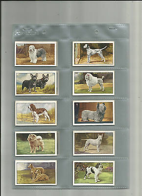 Full Set -  Gallaher - Dogs A series - 1936