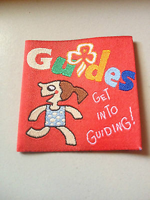 Girl Guides / Scouts Get Into Guiding