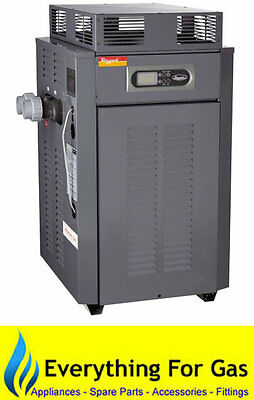 Raypak 200 Domestic Gas Pool and Spa Heater - LPG or Natural Gas