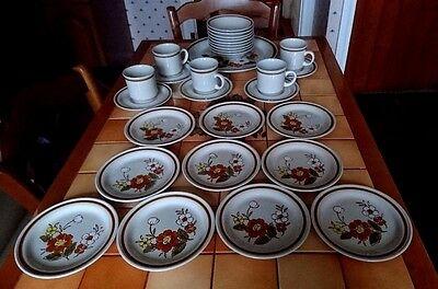Mountain Wood Collection 10 Plates, 9 Bowls, 5 Cups & Saucers & Serving Platter