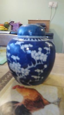 Chinese Blue & White Porcelain Painted Ginger Jar