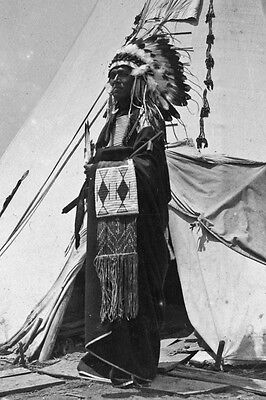 New 4x6 Native American Photo: Black Horse, a Pawnee Chieftain in Costume 1904