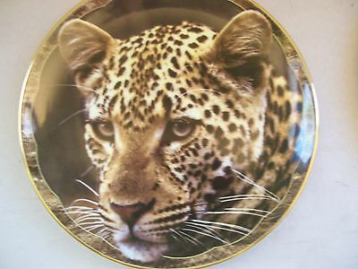 "Collector Plate Royal Doulton ""Leopard Lord""  ""Guardians of the Wild"" MINT"
