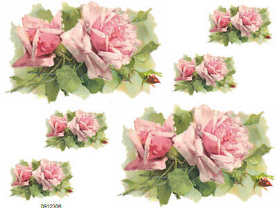 KLeiN PinK CaBbaGe RoSeS SHaBbY WaTerSLiDe DeCALs *FuRNiTuRe SiZe*