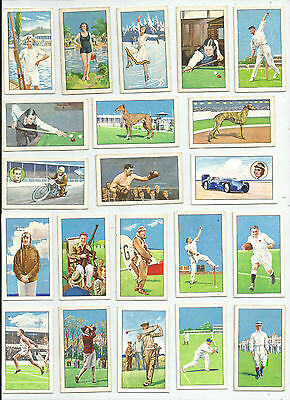 Full Set -  Gallaher - Champions A series  - 1934