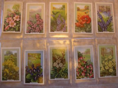 Two Gallaher Cigarette Card Sets - Wild Flowers & Garden Flowers