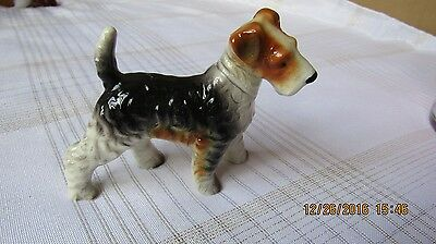 "Vintage Wire Haired Fox Terrier Figurine Japan Porcelain - 3 1/4 ""T x 5""L"