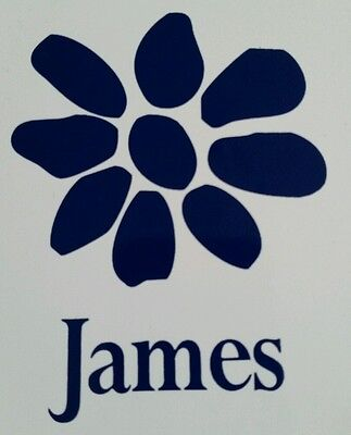 james the band tim booth magnet white / blue